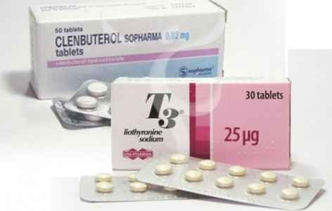 Clenbuterol T3 Cytomel Stack